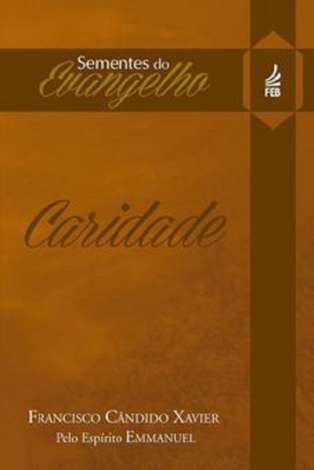 SEMENTES DO EVANGELHO - CARIDADE - BOLSO