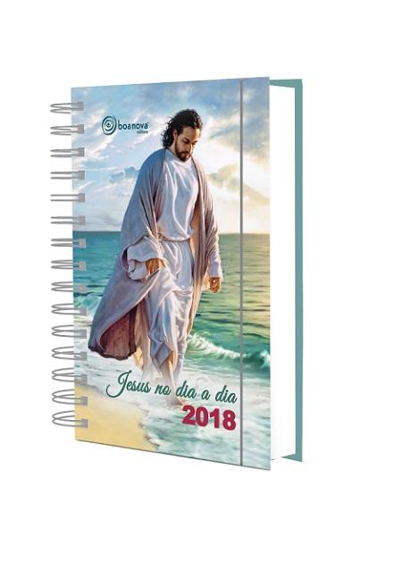 JESUS NO DIA A DIA 2018 - WIRE-O
