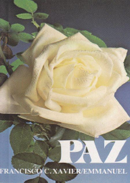 PAZ - BOLSO
