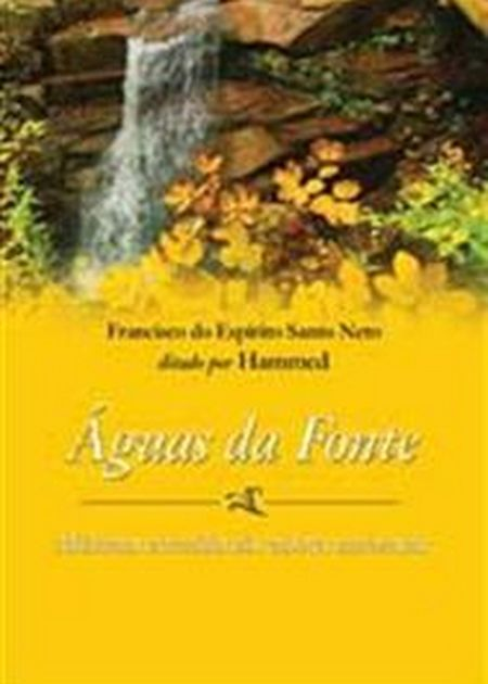 AGUAS DA FONTE (BOLSO)