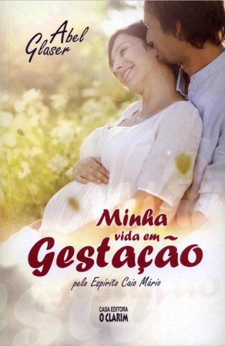 MINHA VIDA EM GESTACAO