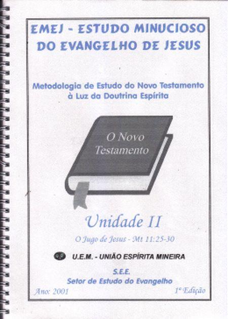 ESTUDO MINUCIOSO DO EVANGELHO DE JESUS - VOL II