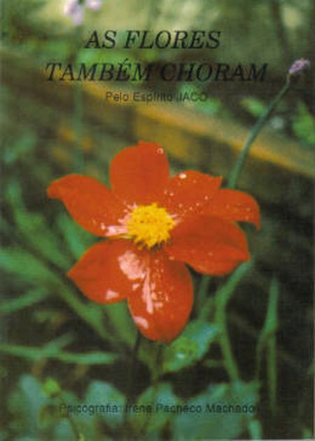 FLORES TAMBEM CHORAM (AS) (BOLSO)