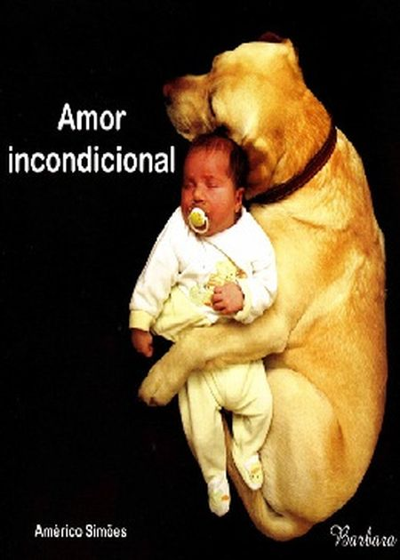 AMOR INCONDICIONAL - BARBARA