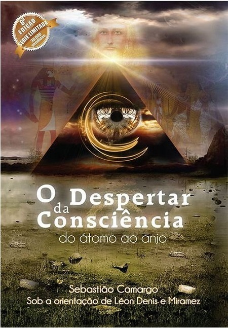 DESPERTAR DA CONSCIENCIA (O) - DO ATOMO AO ANJO - NORMAL